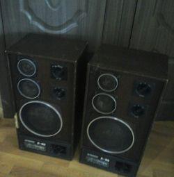 Колонки радиотехника S90