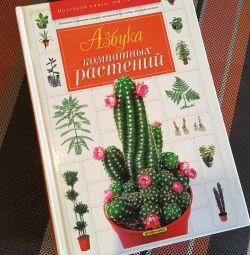 Carte de plante