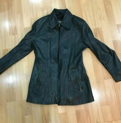 Leather natures. jacket Colomer Munmany (Spain)
