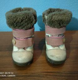 Kapika'nın botları