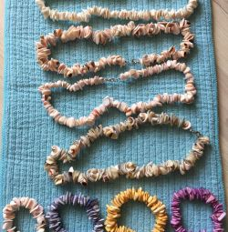Decoration from seashells