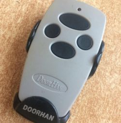 Keychain DoorHan