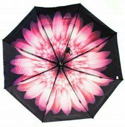 Şemsiye bukalemun