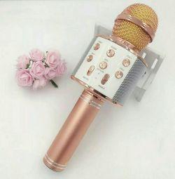 Yeni karaoke mikrofonu WS 858