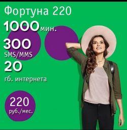 Megaphone fortune 220
