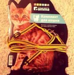 Slave cat new