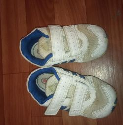 Sneakers Adidas 24 rr