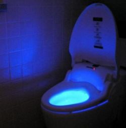 Backlight for toilet bowl