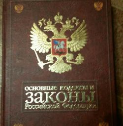 Book Basic Codes and Laws of the Russian Federation