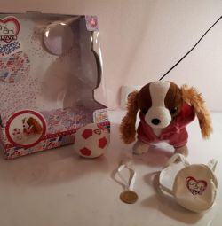 Toy dog chicha lav