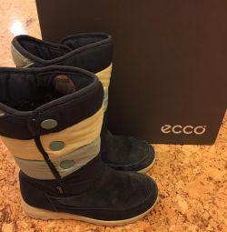 Чоботи фірми Ecco