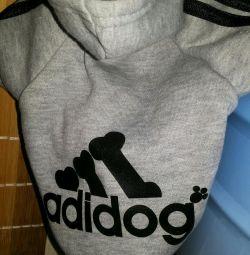 Hoodies pentru câini și sfinxuri