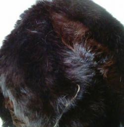 Κουνέλι καπέλο