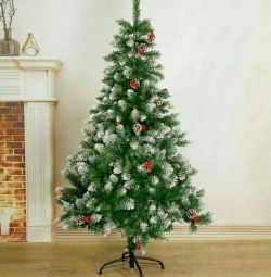 Fir-trees ? LUXURY with cones-berries + Gift + Delivery!