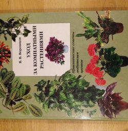Ev bitkilerinin bakımı