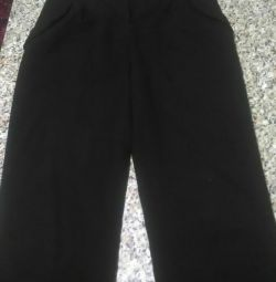 School pants for a girl