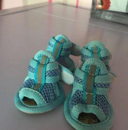 Sandalets
