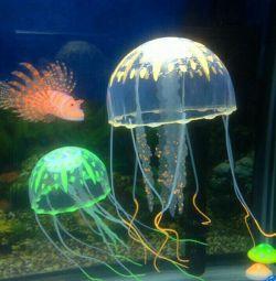 Медуза, прикраса в акваріум