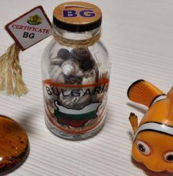 Bottle with seashells Fish Nemo Pebbles