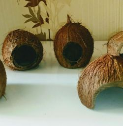 Coconut Fish Shelters