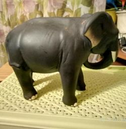 Tea and elephant toy