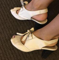 Pantofi 37p