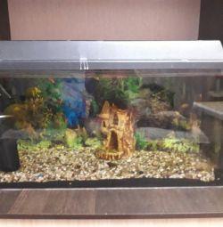 Aquarium 120l