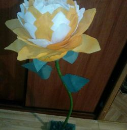 Growling flower