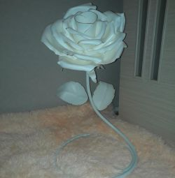 Floor lamp .bra. Lamp