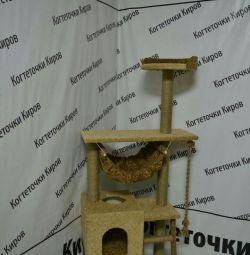 Complex kogtetochka
