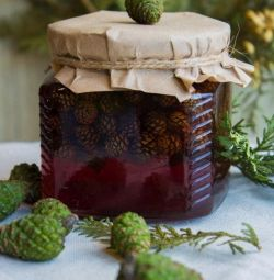 Urbech, pine and pine cone jam