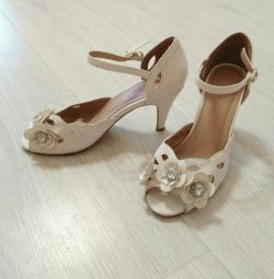 36 Kadın Ayakkabıları