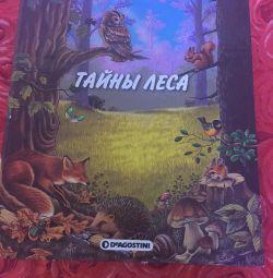 Cartea Secretelor pădurii 🌳 Enciclopedie