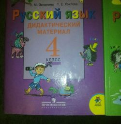 Russian language Didactic material 3 and 4