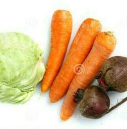 Продам моркву, буряк, капусту.