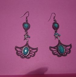 earrings 100r