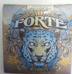 Strings Forte Custom Shop 09-46. Delivery