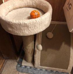 Kediler için ev