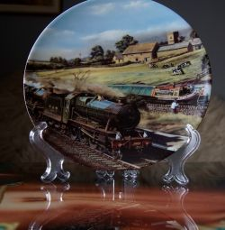 Collector Plate Sharing the Sunshine England