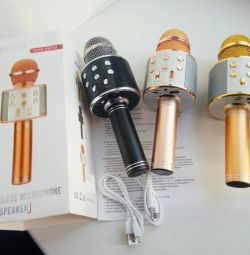 Wireless Karaoke Microphone WST WS-858 Gold