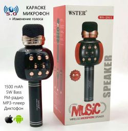 Karaoke Mikrofon Hoparlör Ses Kaydedici FM Wster WS-2911