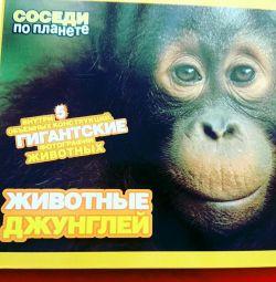 Книга про тварин