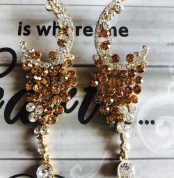 Stunning Indian Earrings
