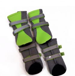 Socks for the dog green phosphorus