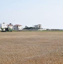 Touristic Fields in Pervolia, Larnaca