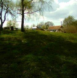 15 hectare plot
