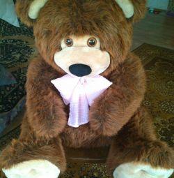Μεγάλη νέα αρκούδα