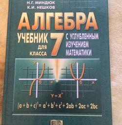 A Textbook on Algebra
