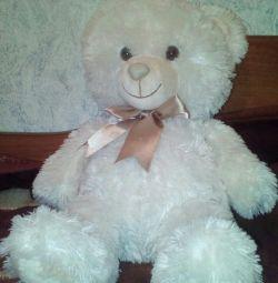 Bear, new