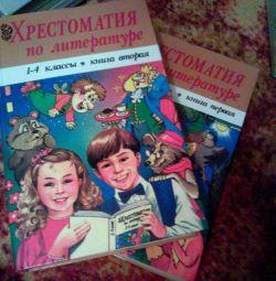 Literature Reader